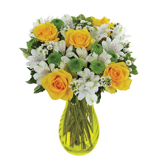 Lovely Lemon & Lime Roses (BF217-11KM)